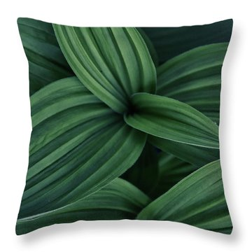 Throw Pillow featuring the photograph False Hellebore Plant Abstract by Nathan Bush