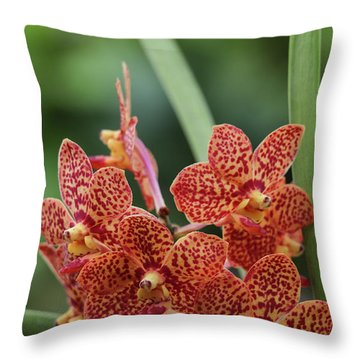 Family Of Orange Spotted Orchids Throw Pillow