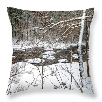Farmington River - Northern Section Throw Pillow