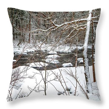 Farmington River - Northern Section Throw Pillow