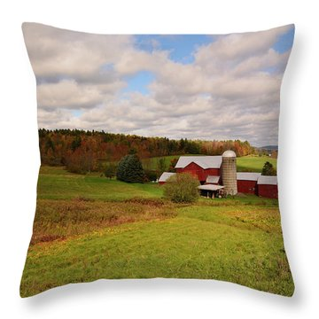 Throw Pillow featuring the photograph Farmland In Autumn by Angie Tirado