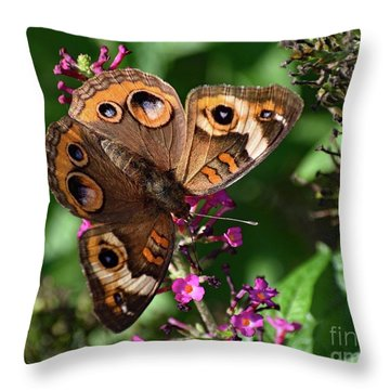 Fascinating Pattern Of A Common Buckeye Throw Pillow