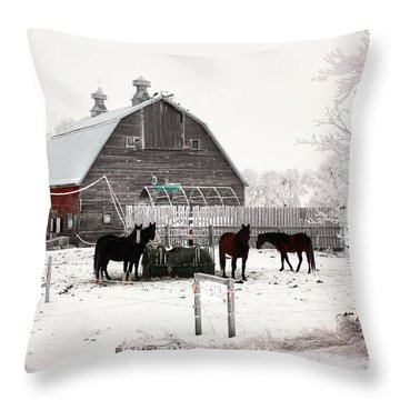 Feed Throw Pillow