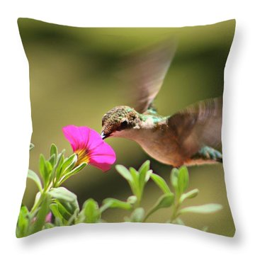 Throw Pillow featuring the photograph Feeding Time by Candice Trimble