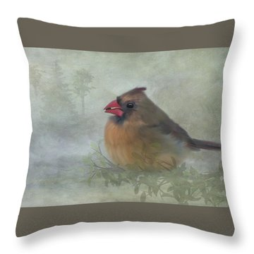 Throw Pillow featuring the photograph Female Cardinal With Seed by Patti Deters