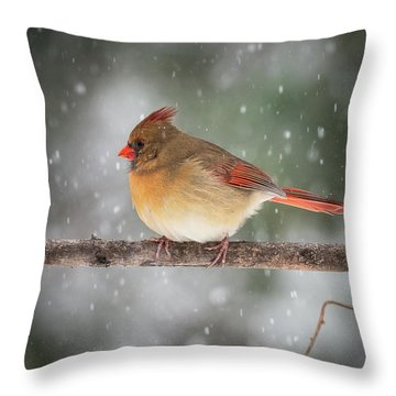 Female Red Cardinal Snowstorm Throw Pillow