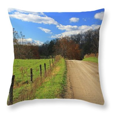 Throw Pillow featuring the photograph Fence And Country Road by Angela Murdock