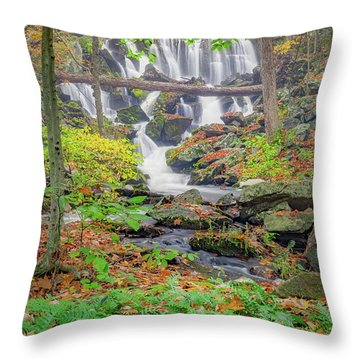 Throw Pillow featuring the photograph Fern Falls by Bill Wakeley
