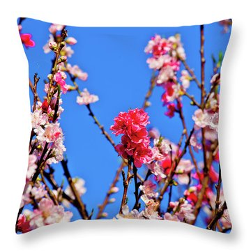 Field Of Flowers In Blue Sky Throw Pillow