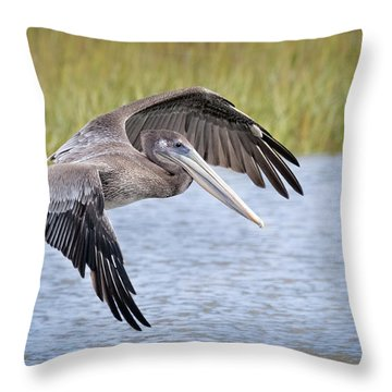 Final Aproach Throw Pillow