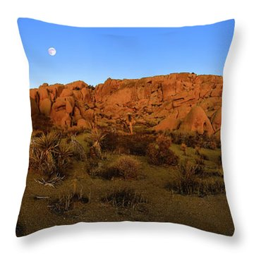 Final Full Moon Set 2014 Throw Pillow