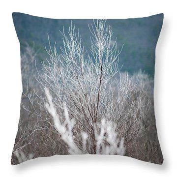 Fingers Of Hoarfrost Throw Pillow
