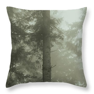 Throw Pillow featuring the photograph Fir And Fog - Toned by Charmian Vistaunet