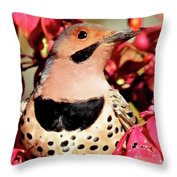 Yellow-shafted Flicker Throw Pillow