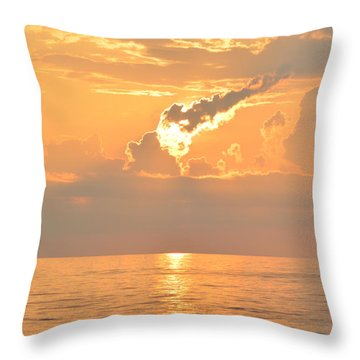 Throw Pillow featuring the photograph Fireball   by Barbara Ann Bell