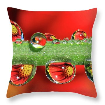 Firey Drops Throw Pillow