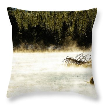 Throw Pillow featuring the photograph First Fish by Pete Federico