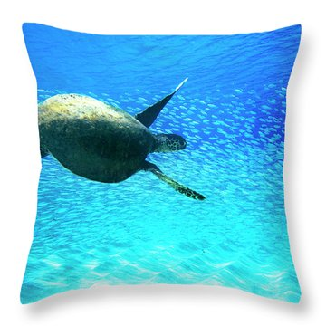 Fish Swoop Throw Pillow