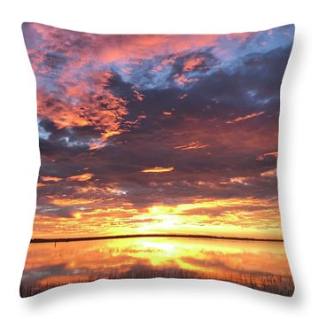 Throw Pillow featuring the photograph Flash by LeeAnn Kendall