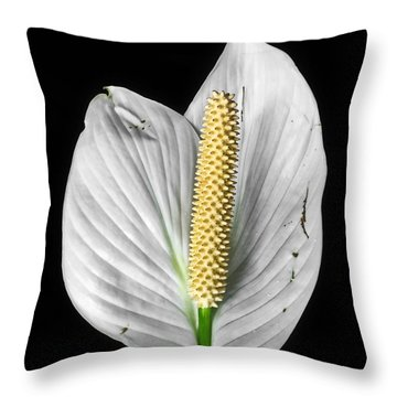 Flawed Beauty Throw Pillow