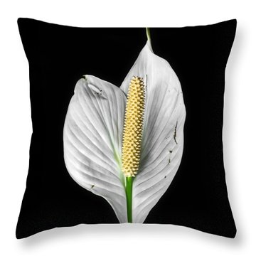Flawed Beauty Throw Pillow