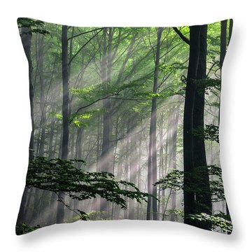 Fleeting Beams Throw Pillow