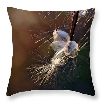 Throw Pillow featuring the photograph Flight by Michelle Wermuth