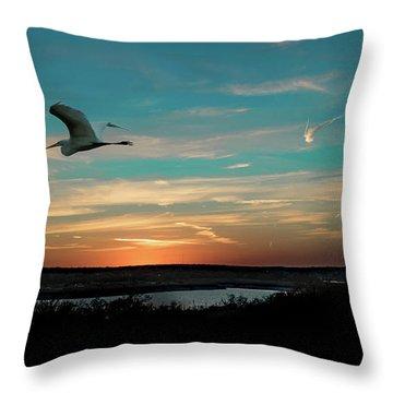 Flight To The Lake Throw Pillow