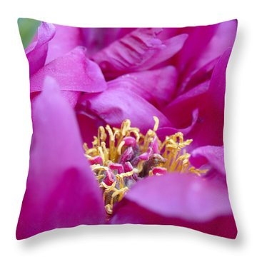 Throw Pillow featuring the photograph Floral Melody #1 by Ahma's Garden