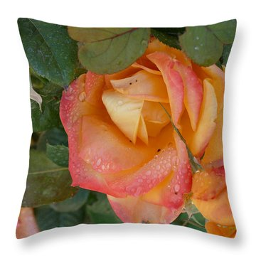 Throw Pillow featuring the photograph Floral Melody #2 by Ahma's Garden