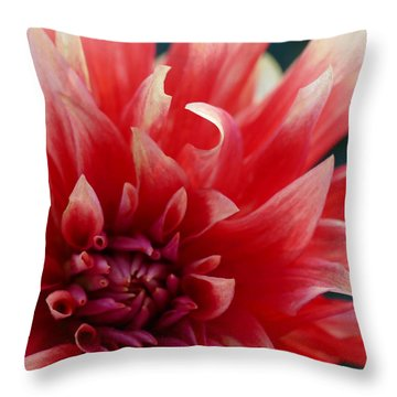 Throw Pillow featuring the photograph Floral Melody #5 by Ahma's Garden