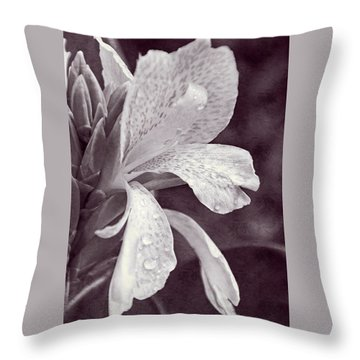 Throw Pillow featuring the photograph Floral Memories I by Leda Robertson