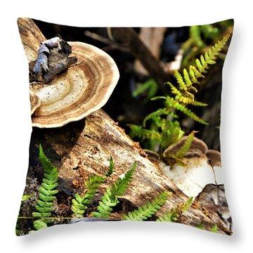 Florida Forest Throw Pillow