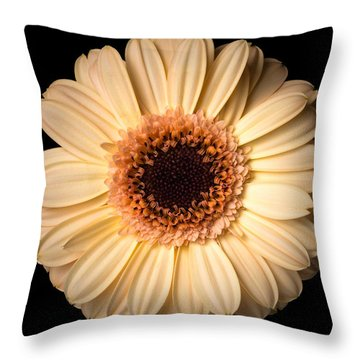 Flower Over Black Throw Pillow