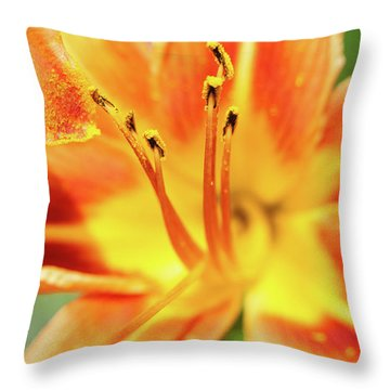 Flower Pollen Throw Pillow