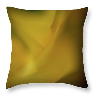 Throw Pillow featuring the photograph Flower Shades by Francisco Gomez