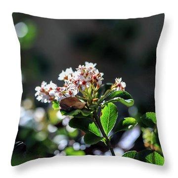 Beautiful Blooms Throw Pillow