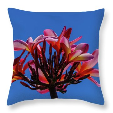 Flowers In Clear Blue Sky Throw Pillow