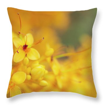 Throw Pillow featuring the photograph Flowers Of A Yellow Saraca Tree by Charmian Vistaunet