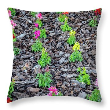 Flowers On The Stones Throw Pillow