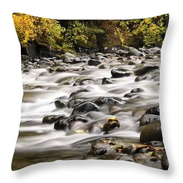 Throw Pillow featuring the photograph Flowing Molalla by Brian Eberly