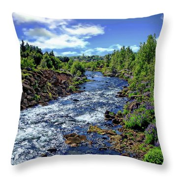 Throw Pillow featuring the photograph Flowing Stream by Anthony Dezenzio