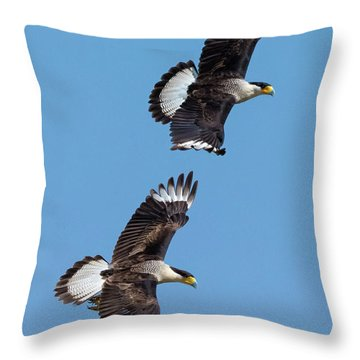 Flying Caracaras Throw Pillow