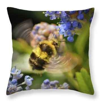 Flying Miracle Throw Pillow