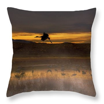 Flying Over Crane Pond Throw Pillow