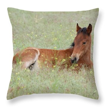 Foal In The Flowers Throw Pillow