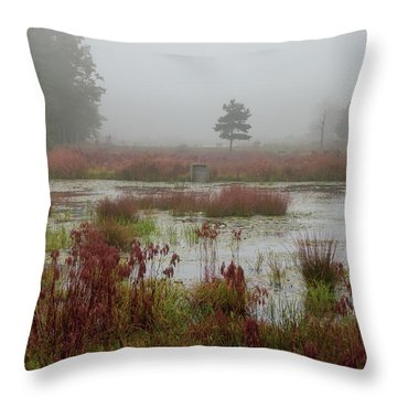 Throw Pillow featuring the photograph Foggy Morning At Cloverdale Farm by Kristia Adams