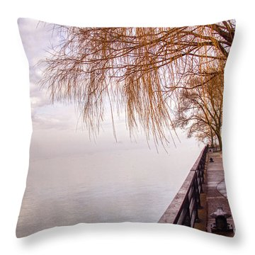 Foggy Niagara Throw Pillow
