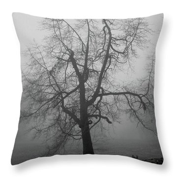 Throw Pillow featuring the photograph Foggy Tree In Black And White by William Selander