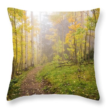 Foggy Winsor Trail Aspens In Autumn 2 - Santa Fe National Forest New Mexico Throw Pillow